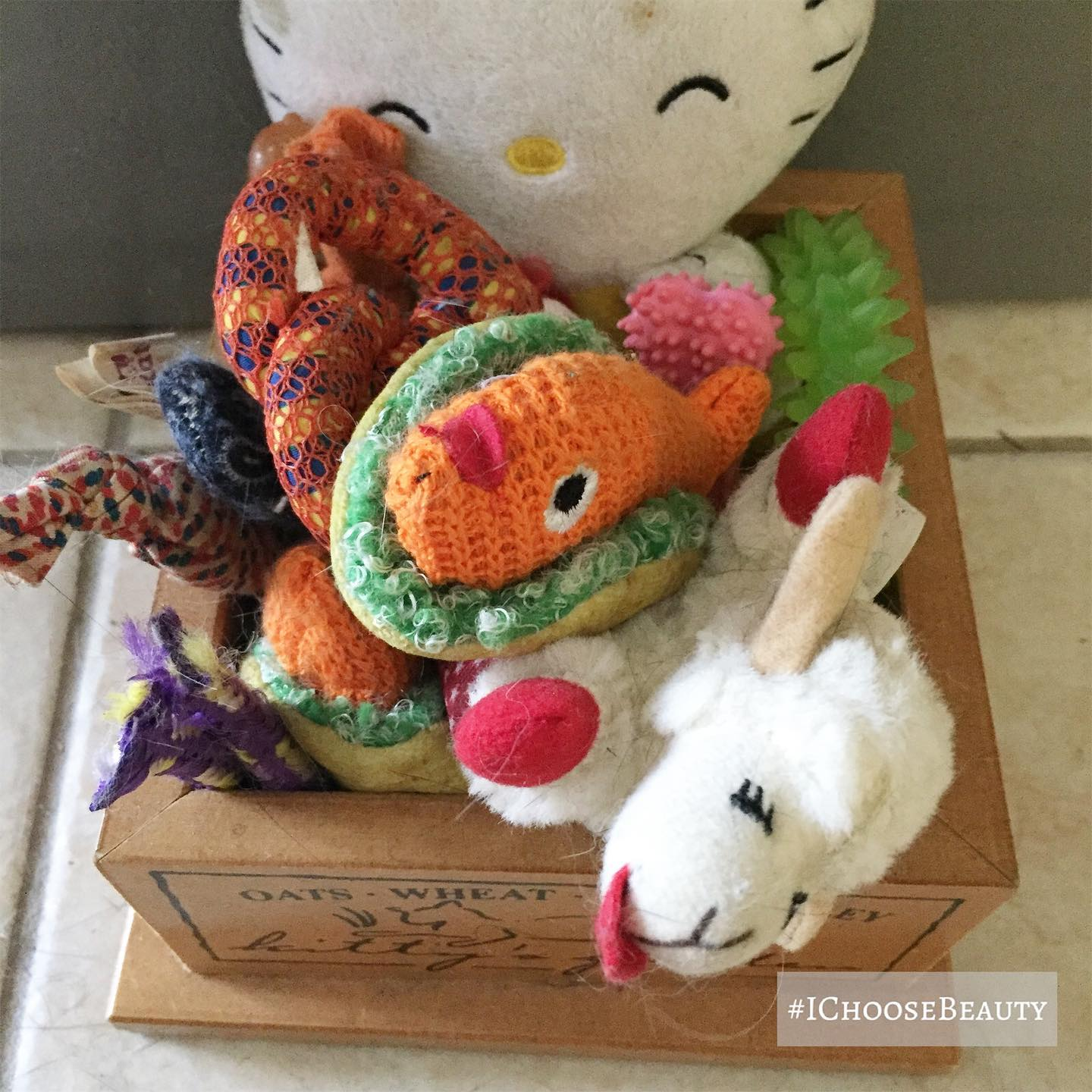 So many cute catnip toys! One of the rare moments they're all put away in their little box.  #ichoosebeauty Day 2476