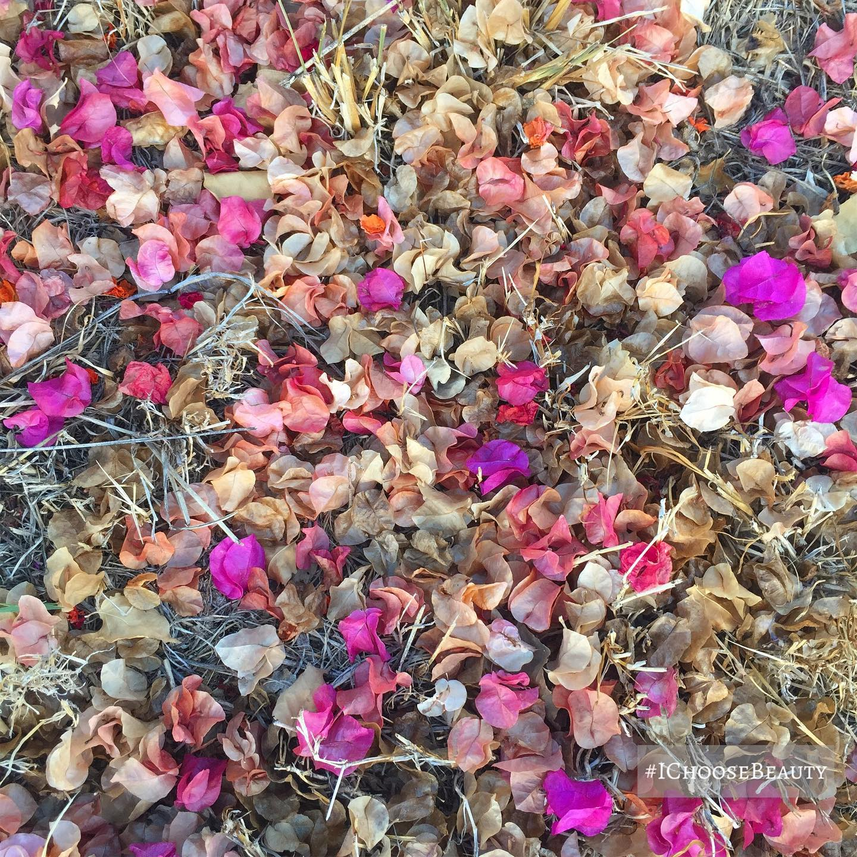 Fall's confetti. #ichoosebeauty Day 2492