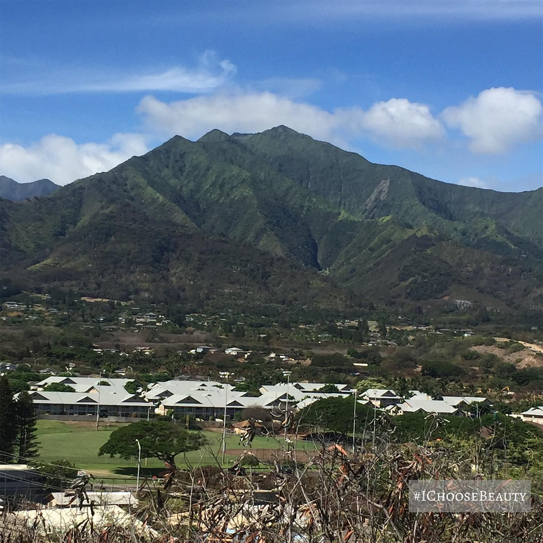 Hello, majestic mountains. 😯  #ichoosebeauty Day 2527