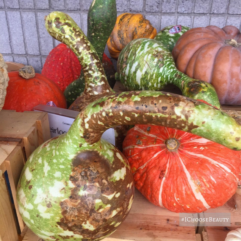 Oh. My. Gourd. 🧡 #ichoosebeauty Day 2536