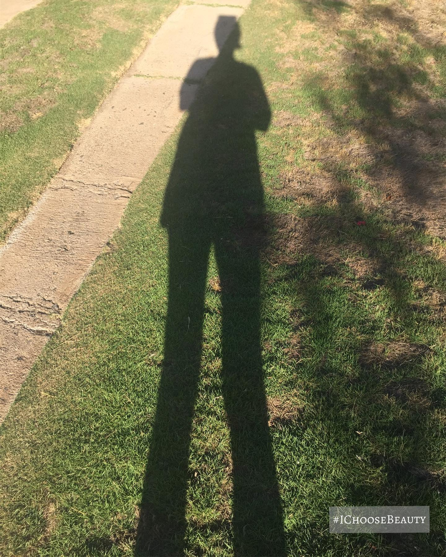 Just me and my (crazy tall) shadowwwww! #ichoosebeauty Day 2576