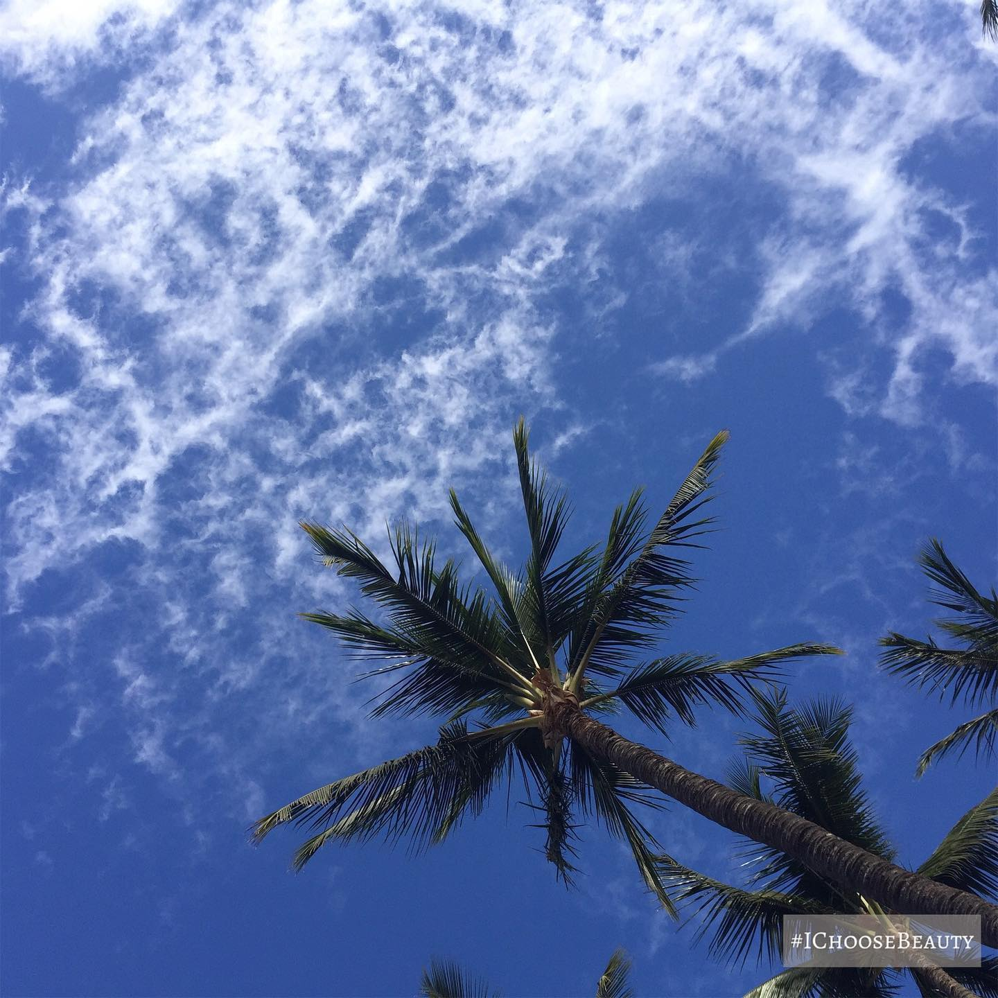 Just lying here, staring at the sky. #ichoosebeauty Day 2587