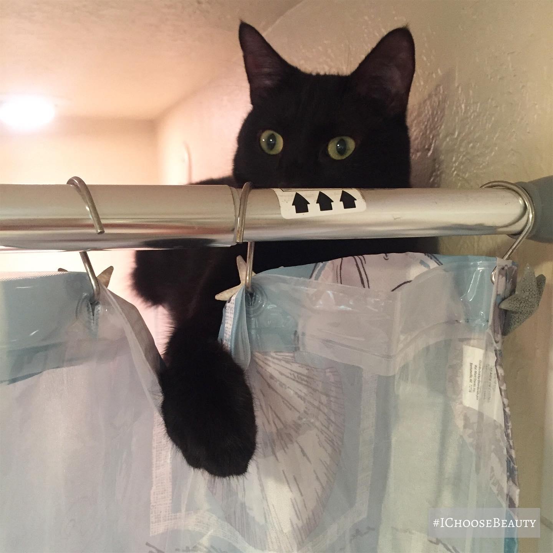 My shower stalker!  #ichoosebeauty Day 2647