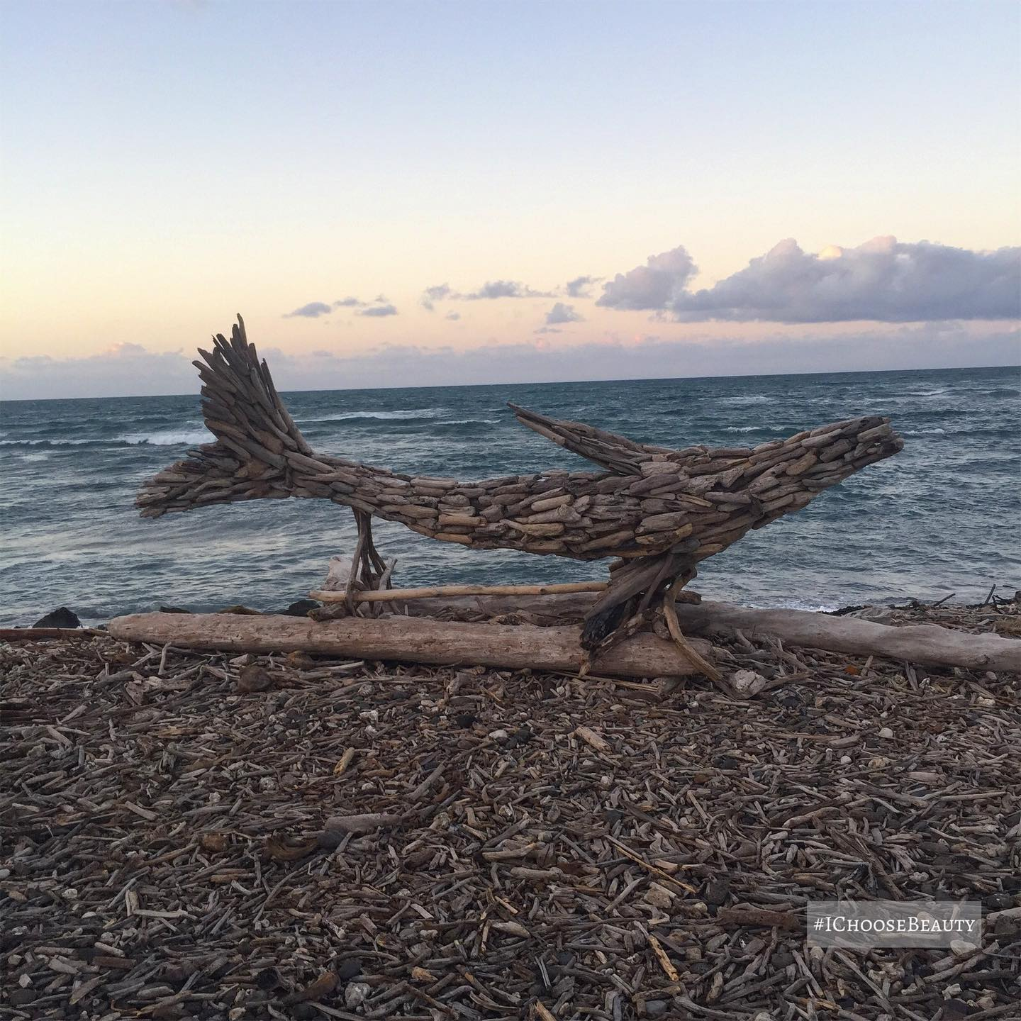 How amazing is this driftwood art?! Swipe to see the turtle. 😀😀 #ichoosebeauty Day 2735
