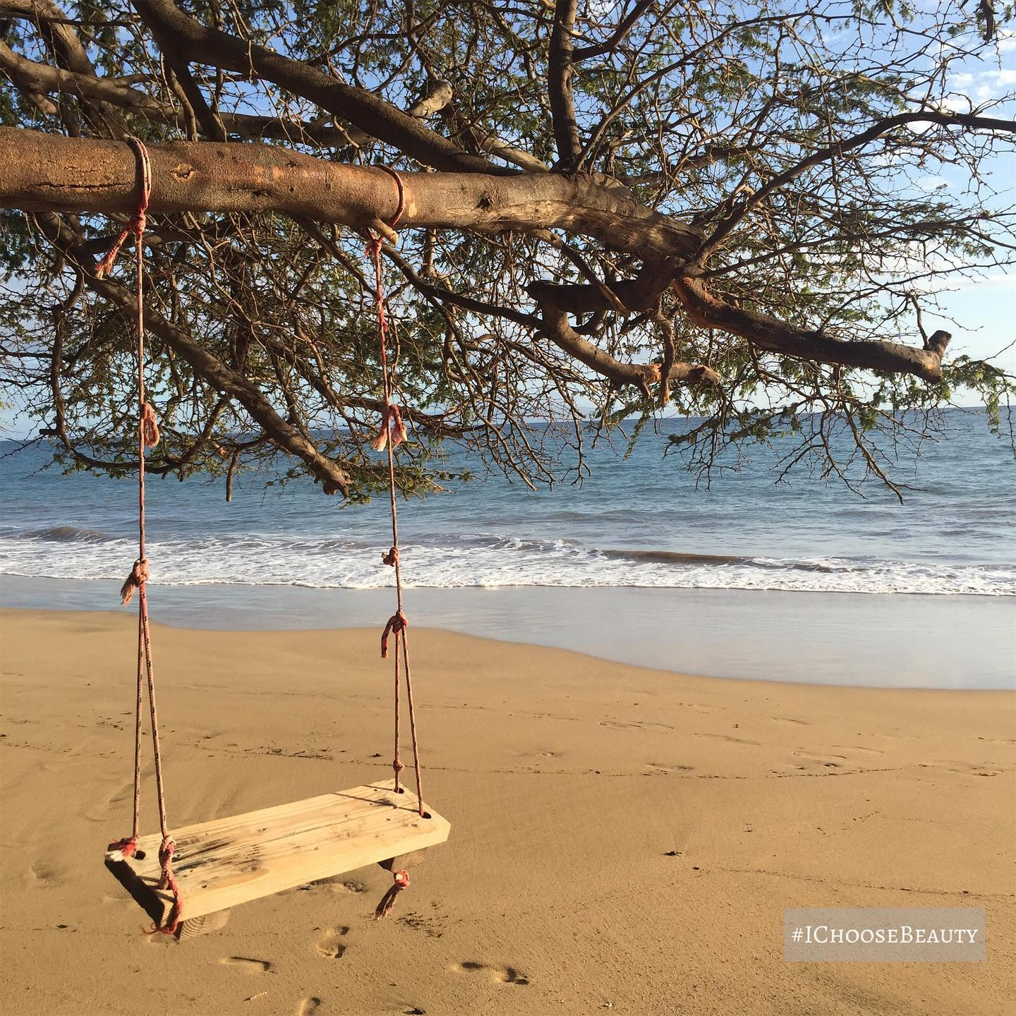 In love with this magically carefree swing. #ichoosebeauty Day 2743